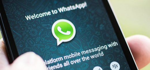 35 melhores frases para status de WhatsApp